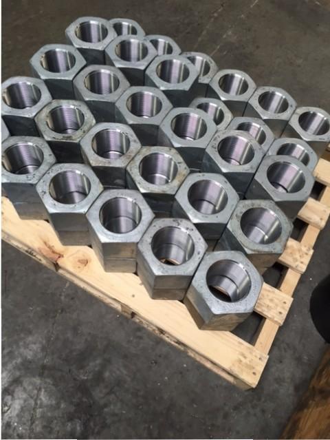 4-inch-Nut-Pics-3.7.16-2